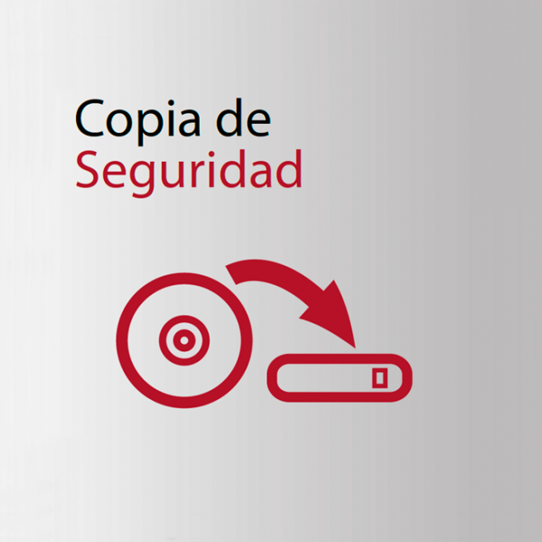 copia-seguridad1-600×600
