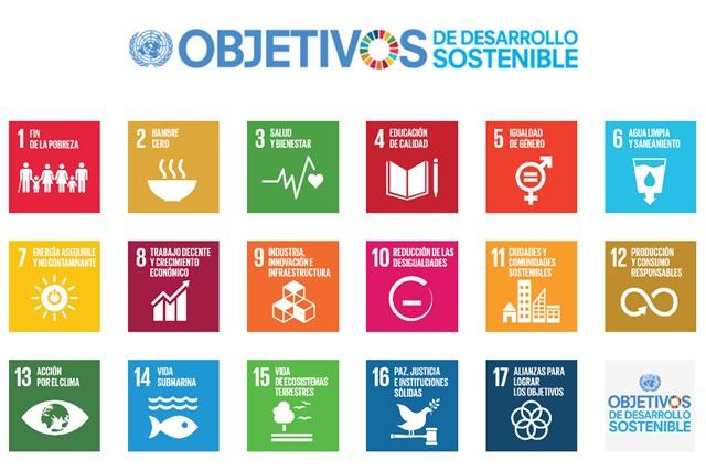 17 objetivos naciones unidas